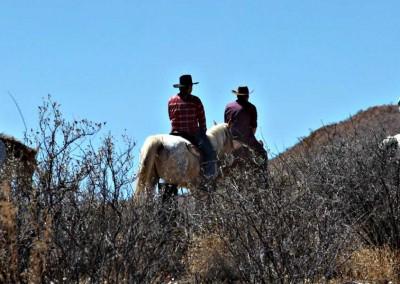 Horse trail ride bei Sonnenuntergang & Western BBQ